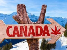 MMJ PhytoTech ASX MMJ Canada cannabis producer Weed Me