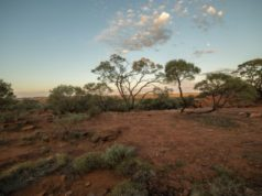 Kairos Minerals ASX KAI gold resource increase Pilbara