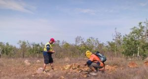 Northern Cobalt ASX N27 Wollogorang Projectrock chip stream sediment sampling