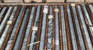 Orinoco Gold ASX OGX Faina project Brazil drill core