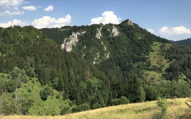Adriatic Metals ASX ADT Rupice zinc drill results Bosnia and Herzegovina