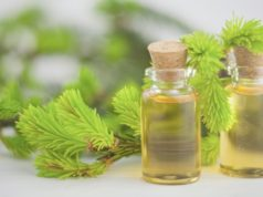 EVE Investments ASX acquires Jenbrook Australian organic tea tree oil