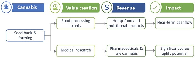 QBL cannabis business flow chart