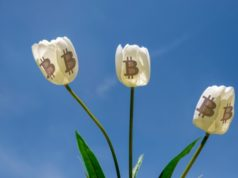 Bitcoin bubble bursting tulip mania