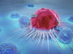Imugene ASX IMU endpoints Phase 1b gastric cancer immuno-oncology trial HER-Vaxx vaccine