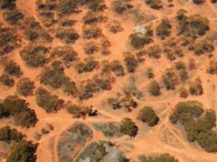 Lithium Australia ASX LIT debuts vanadium resource Youanmi