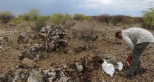 Tanga Resources ASX TRL copper outcropping Hagenhof project Namibia