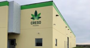 Creso Pharma ASX CPH PharmaCielo cannabis acquisition Colombia