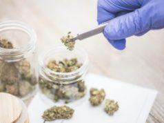 Novel drugs medical cannabis next generation research