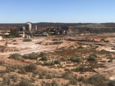Rox Resources Venus Metals Corporation ASX RXL VMC Youanmi gold grades drilling
