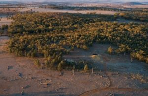 Alkane Resources ASX ALK high-grade gold regional drilling Tomingley