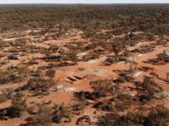 Apollo Consolidated ASX AOP RC drilling gold mineralisation Lake Rebecca