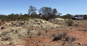 Aldoro Resources ASX ARN Penny South assays gold