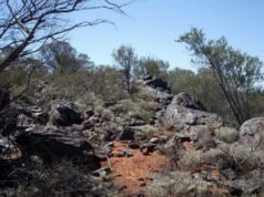 GWR Group ASX Wiluna West iron ore project mining C4