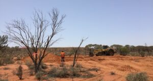 Investigator Resources ASX IVR Stuart Shelf copper gold DGO