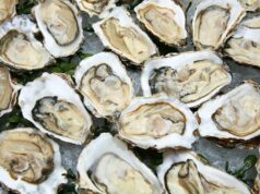 Angel Seafood ASX AS1 oysters Coffin Bay