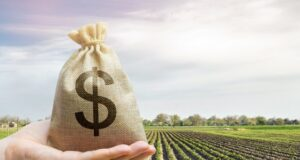 Wide Open Agriculture ASX WOA placement share purchase plan 2020