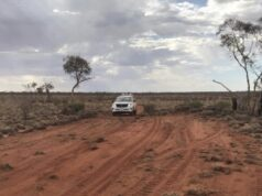 RareX ASX REE Weld North Rare Earths Project exploration underway