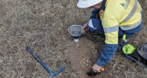 Duke Exploration ASX DEX Quorn pXRF soil sampling survey Mt Flora copper