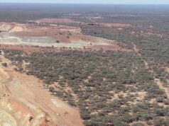 Venus Metals VMC ASX platinum group elements mineralisation Vidure South
