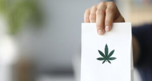 How long until Australians can access over-the-counter medical cannabis separating myths truth