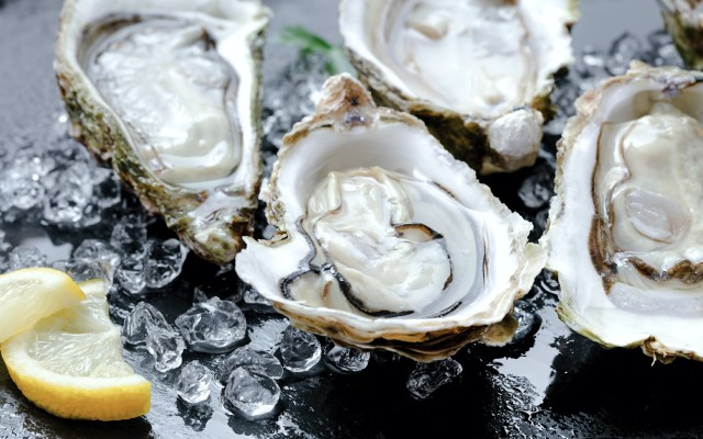 Angel Seafood ASX AS1 Hālo Club Zac Halman certified organic and sustainable oysters direct-to-consumer sales channel