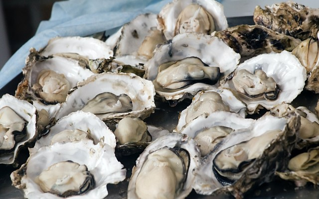 Angel Seafood ASX AS1 pacific oysters 2021 sales revenue