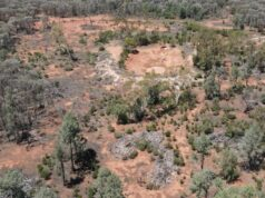 Legacy Minerals ASX LGM drilling historic Harden gold mine Lachlan Fold Belt New South Wales